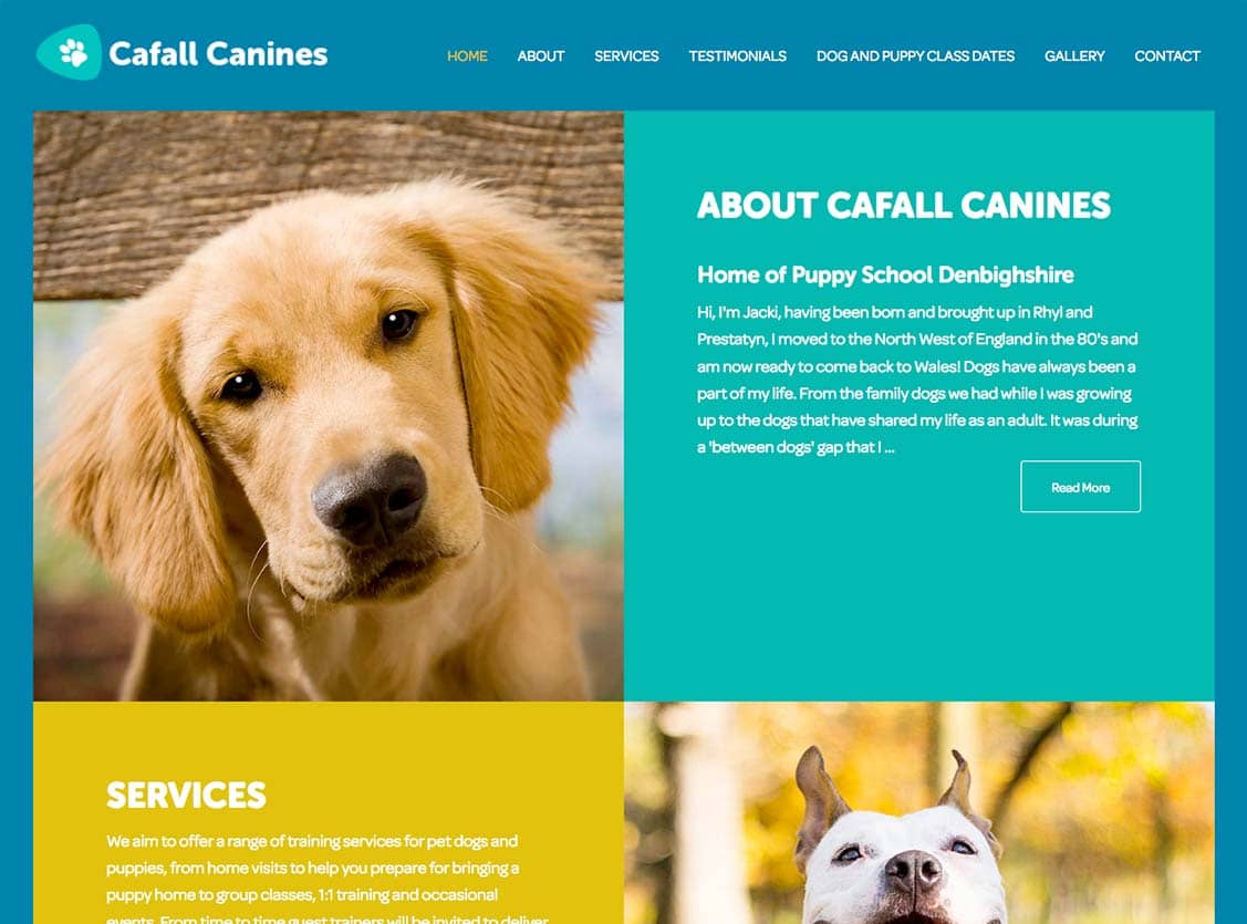 cafall canines dog training