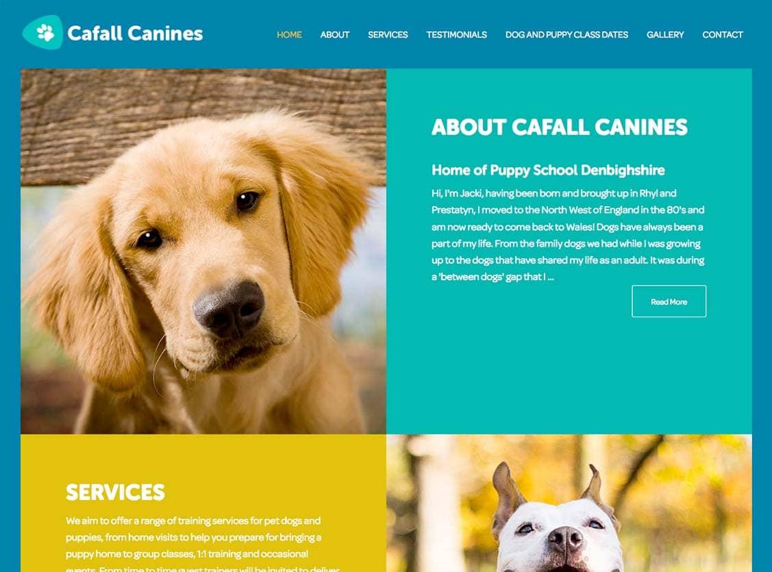 Cafall Canines Dog Training, Rhyl